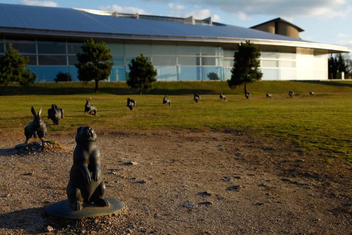 Les lapins du musée