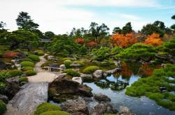 Yuushien Japanese Garden (Matsue City) - Autumn foliage 1