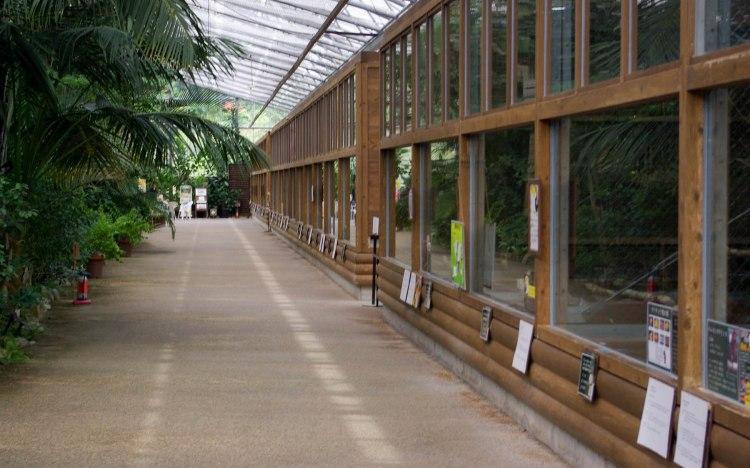 L'intérieur de la troisième serre