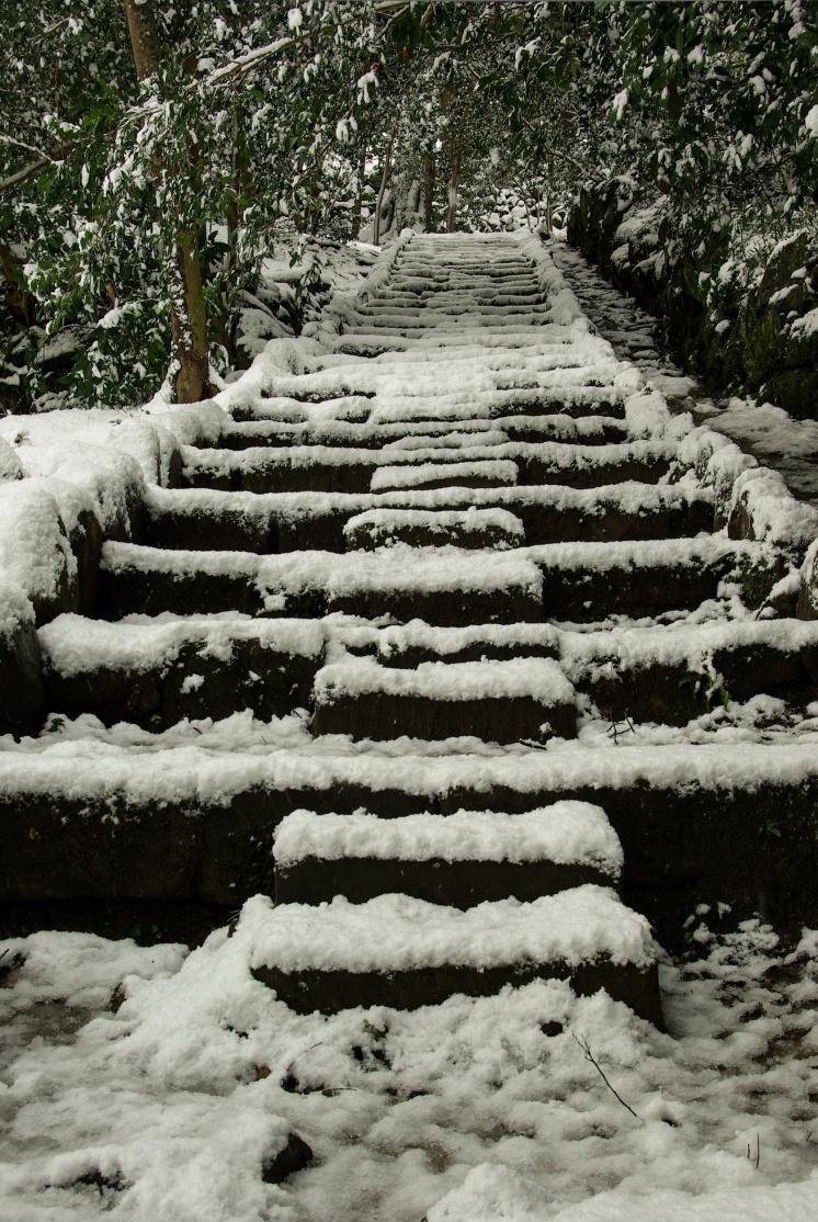 Matsue japon shimane hiver neige chateau
