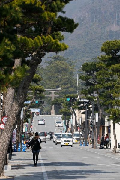 Matsue Shimane Japon tourisme voyage vacances rural sentiers battus hors izumo taisha izumotaisha izumo-taisha sanctuaire grand shinto shintô enmusubi okuninushi sacré dieux province mythologie shinmon dori rue commerçante